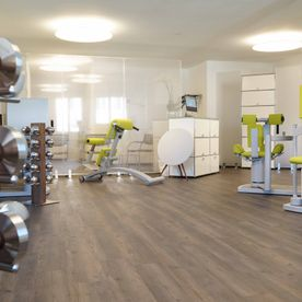 Physiotherapy – Meilen – Physio Genius